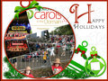 Carols In The Domain - woolworths-carols-in-the-domain fan art