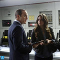 Coulson and Skye