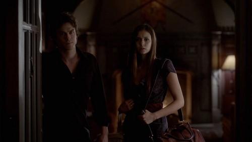 Delena kertas dinding possibly containing a revolving door called Damon and Elena