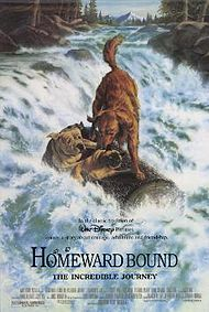 "Movie Poster For The 1993 Disney Film, ""Homeward Bound: The Incredible Journey"""