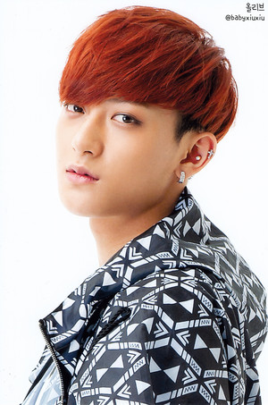 Tao (POP UP STORE PHOTOCARDS)