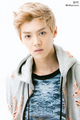 Luhan (POP UP STORE PHOTOCARDS) - exo-m photo