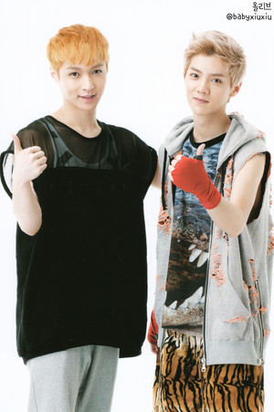 Lay & luhan (POP UP STORE PHOTOCARDS)