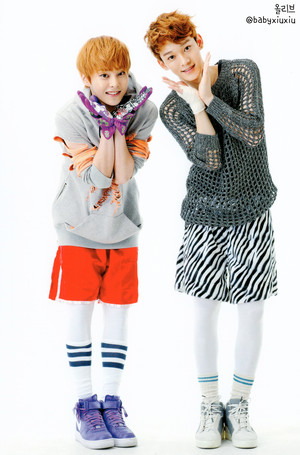 Xiumin & Chen (POP UP STORE PHOTOCARDS)