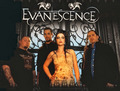 Evanescence - evanescence fan art