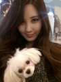 Seohyun Twitter - girls-generation-snsd photo