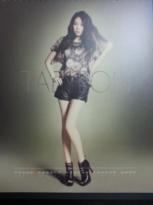 2013 Girls' Generation Season Greeting Calendar