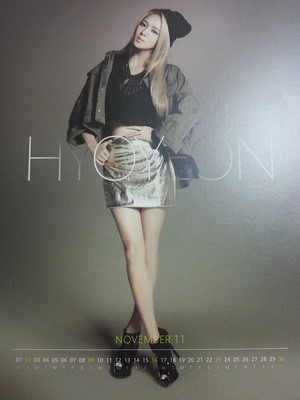 2013 Girls' Generation Season Greeting Calendar