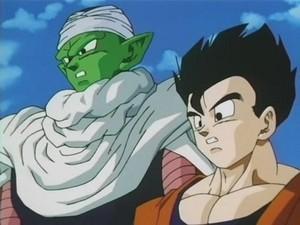 Gohan & Piccolo