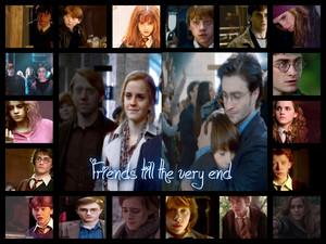 Harr Potter