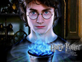THE GOBLET OF FIRE - harry-potter photo