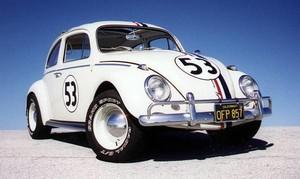 Herbie!!!!!!!