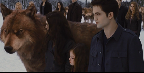 Jacob Black and Renesmee Cullen 壁纸 titled Before The Battle