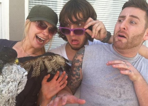 "Laura Prepon پیپر وال possibly with a screech owl, sunglasses, and a horned owl called Directing ""Neighbros"""