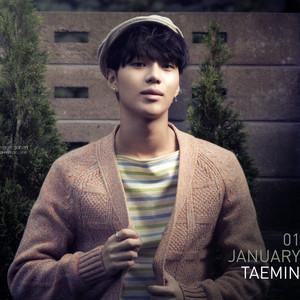 SHINee Taemin Calendar 2014