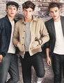 Niall Louis and Liam - louis-tomlinson photo