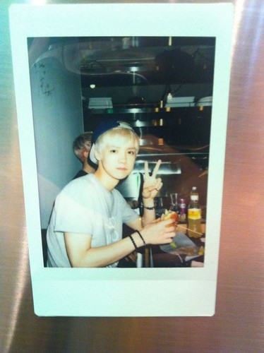 Luhan (루한) wallpaper entitled Luhan polaroids BOY WHO CRIED WOLF(BWCW)100813