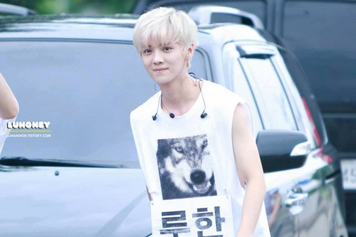 Luhan (루한) wallpaper probably with an automobile and a sign entitled 130810 Korean Music Festival in Sokcho