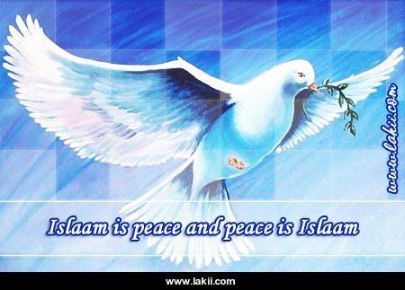 MUSLIMS fond d'écran containing a télévision receiver called Islamic fond d'écran with quote
