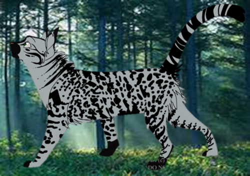 Make Your Own Warrior Cat! kertas dinding called Sootpelt (I made him up)