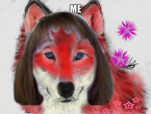 Me as a serigala, wolf