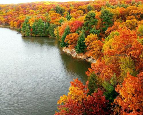 http://images6.fanpop.com/image/photos/36200000/Nature-s-Seasons-image-natures-seasons-36241577-500-400.jpg