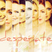 Desperate Housewives - nicollette-sheridan icon