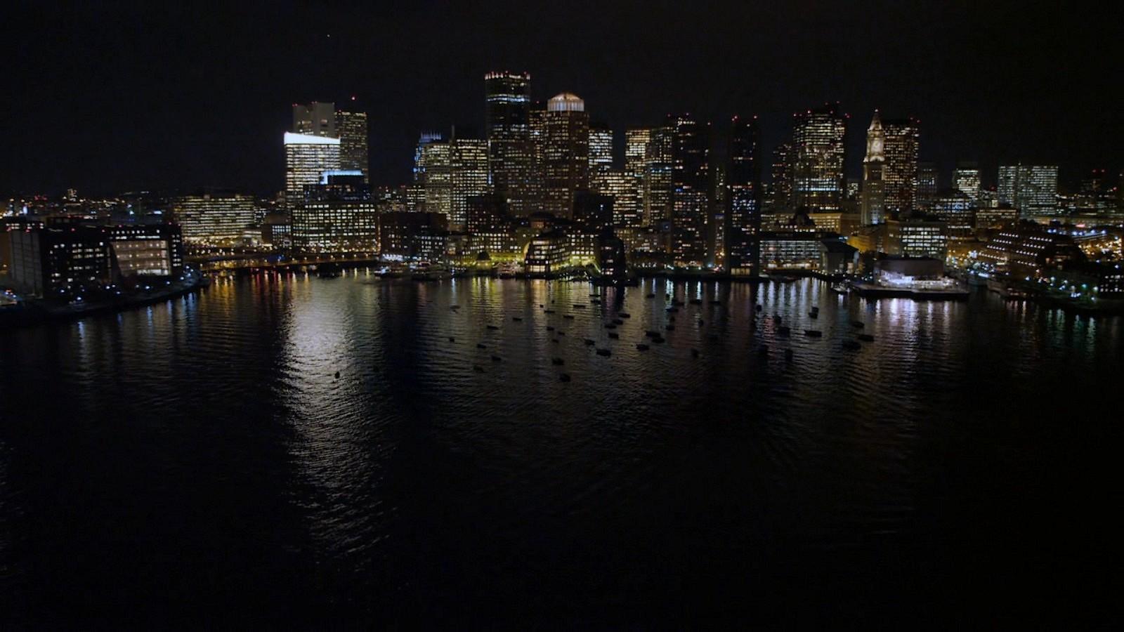 étourneau, étourneau sansonnet City par Night