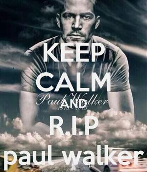 R.I.P,Paul Walker<3