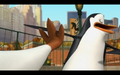 Skipper kicks Kowalski - penguins-of-madagascar photo