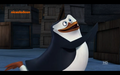 The new Private? :D - penguins-of-madagascar photo