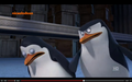 Skipper slaps Private - penguins-of-madagascar photo