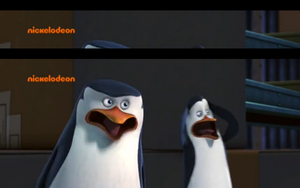 Skipper and kowalski....:OOO