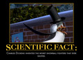 Scientific fact - penguins-of-madagascar photo