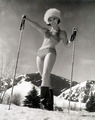 snow bunny - pin-up-girls photo