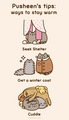 Pusheen's tips: How to stay warm - pusheen-the-cat photo
