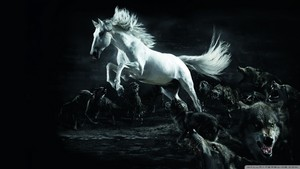 White Horse Vs mga lobo