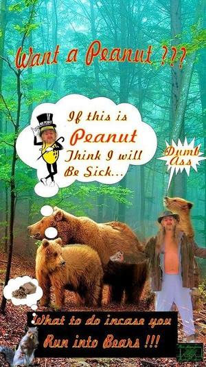 BearNutts