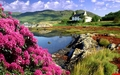 House Scenery Wallpaper - random wallpaper