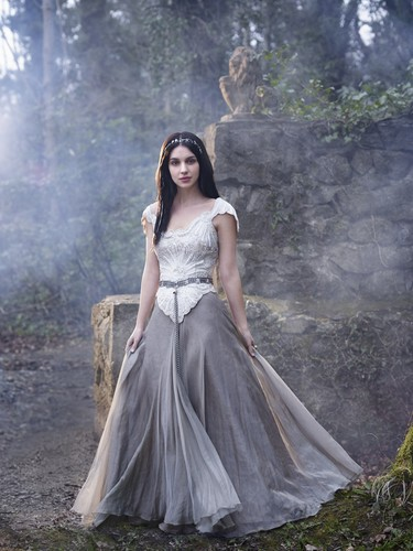 Reign [TV Show] fondo de pantalla containing a vestido entitled Mary Stuart