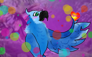 Talento the spix एक प्रकार का तोता, एक प्रकार का वृक्ष