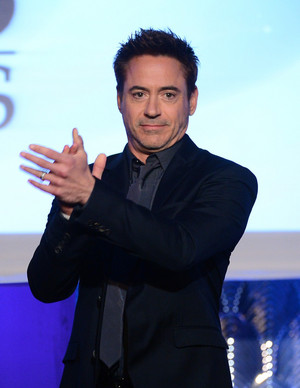 Robert Downey Jr. at the 17th Annual Hollywood Film Awards