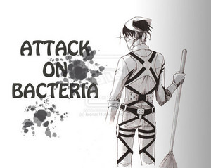 Attack on Bacteria