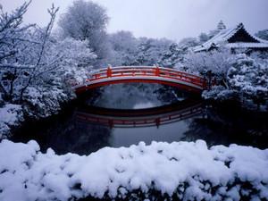 Bridge Sinsen