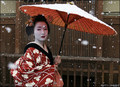 Geisha In Snow