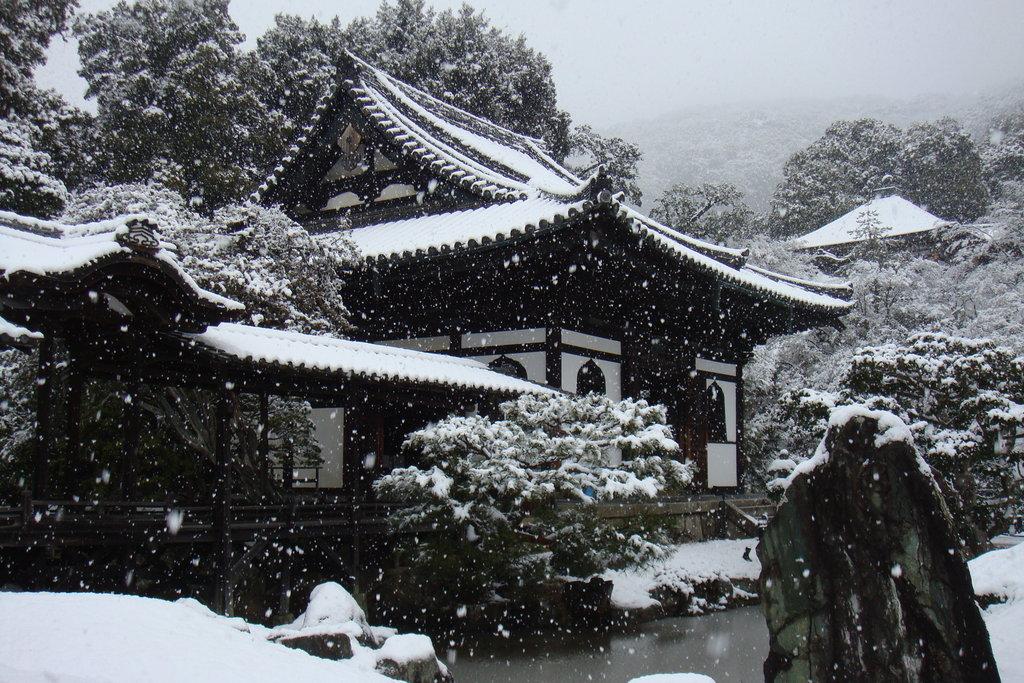 kyoto winter snow sinna 39 s soiree fan art 36243009. Black Bedroom Furniture Sets. Home Design Ideas