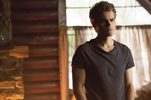 Stefan - Season 5