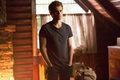 Stefan - Season 5 - stefan-salvatore photo