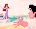 the little mermaid - the-little-mermaid photo