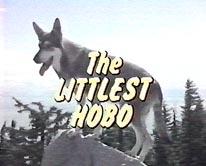 """""""The Littlest Hobo"""""""